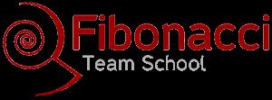 Fibo Team School